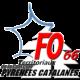 Logo Fo Pyrenees Catalanes