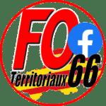Facebook FO Territoriaux 66