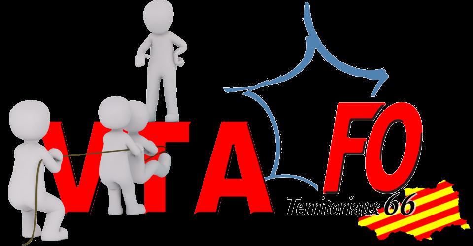 Lancement du Volontariat Territorial en Administration (VTA)